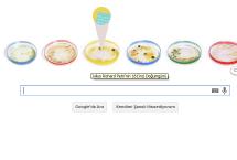 Julius Richard Petri | Özel Google Doodle